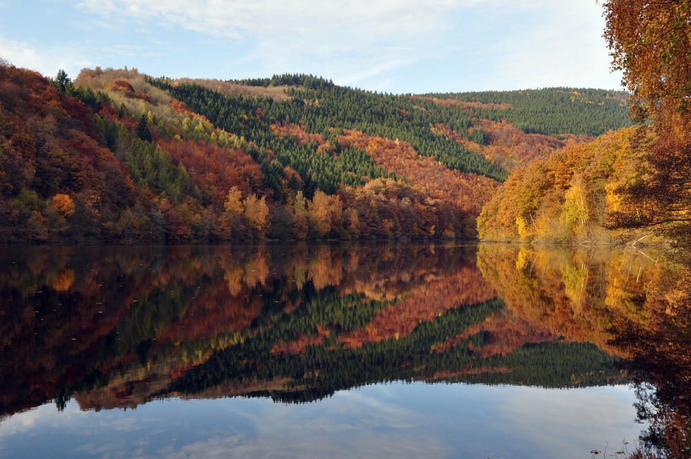 nationalpark-eifel-im-herbst-ceaf3019-e225-4426-8c88-42a38bad07b8